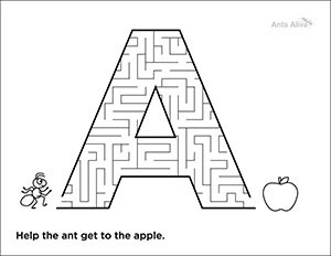 Free A is for ant maze kids activity page