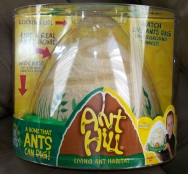 Ant Hill Ant Habitat