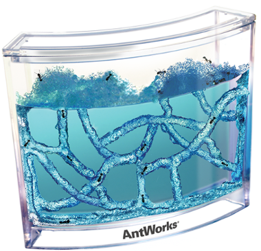 Antworks Gel Ant Habitat