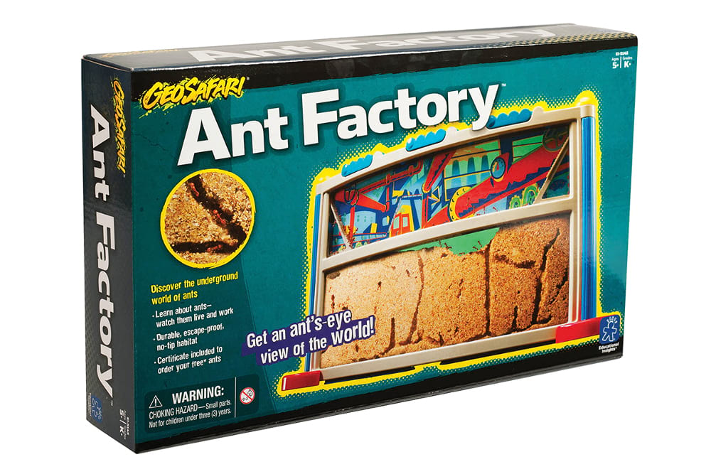 Ant Factory 1