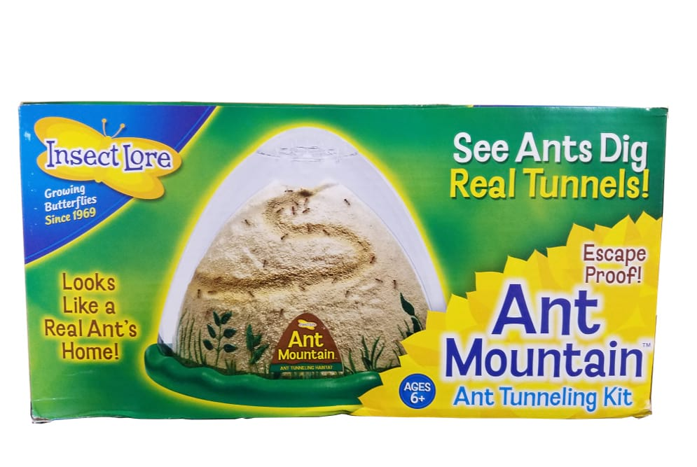 Ant Mountain 1