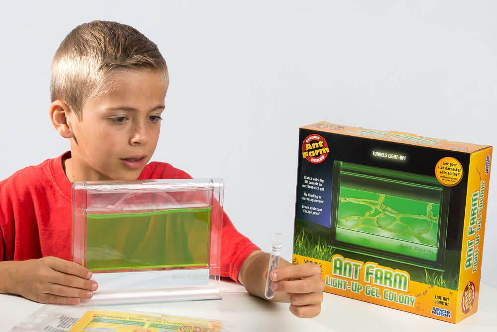 Light-Up Gel Ant Farm 1