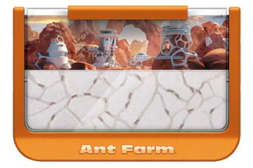 Ant Canyon Ant Farm